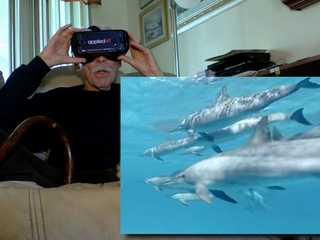 Virtual reality lets patients swim with dolphins
