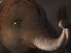 Disney's live-action 'Dumbo' trailer is here