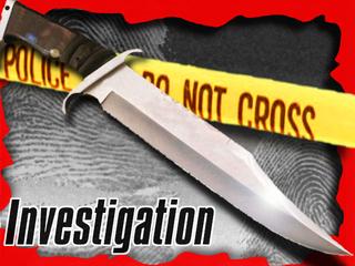 PD: Teen stabs mom, brother in Siesta Key