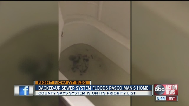 The Effects Of Hurricane Hermine Arent Done Yet An Overflowing Sewer Caused Toilet In A Pasco County Home To Overflow And Flood