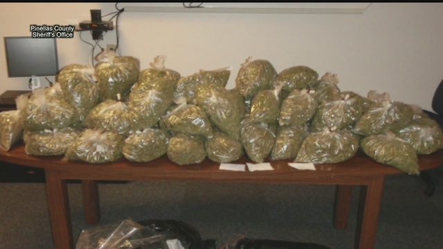 Mercedes Benz Of Tampa >> Pinellas County deputies seize 60 pounds of marijuana ...
