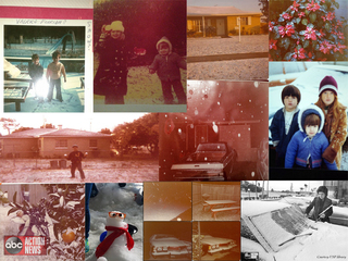 PHOTOS | 40th anniversary of snow in Tampa