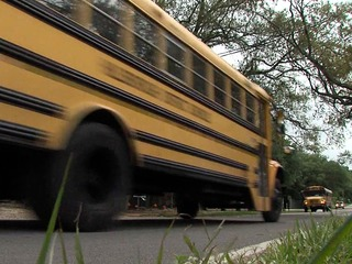 School bus crashes on the rise in Tampa Bay
