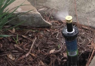 Free sprinkler program can reduce water bill