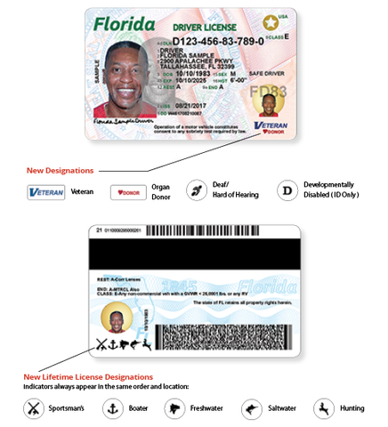 Getting A Florida Drivers License >> Florida driver's licenses and ID cards are getting a new look in August - abcactionnews.com WFTS-TV