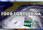 Hurricane Irma: Disaster SNAP benefits guide