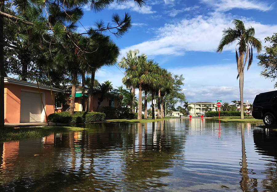 King Tide Floods Tampa Bay Coast Abcactionnews Wfts Tv