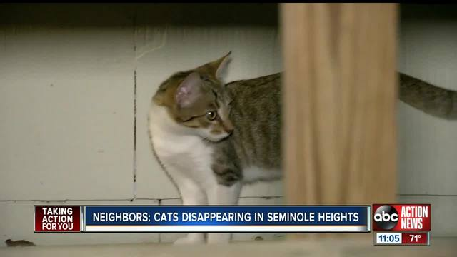 Residents send out warning to Seminole Heights community about missing-…