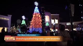 The Shops at Wiregrass: A Holiday Tradition!