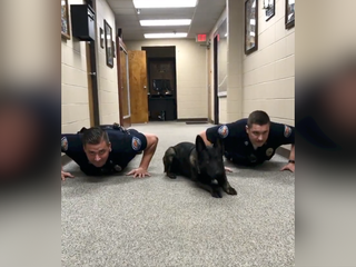 K9 does push-ups with Alabama police officers