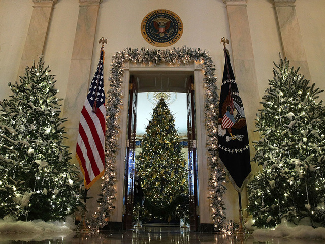 washington dc november 27 the official white house christmas tree stands in the blue room at the white house during a press preview of the 2017 holiday