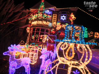 Check out these Christmas lights in Tampa Bay