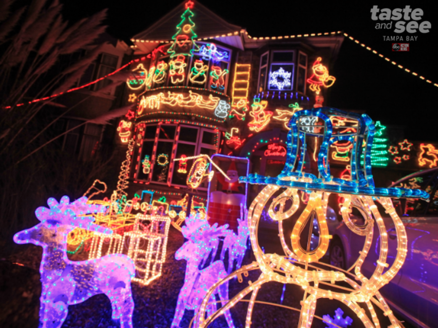 Check Out These Christmas Lights In Tampa Bay   Abcactionnews.com WFTS TV