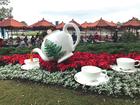 Celebrate Christmas around the world at Epcot