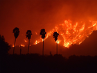 How to prepare for Florida's wildfire season