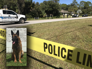 Missing Sheriff's Office K9 found dead