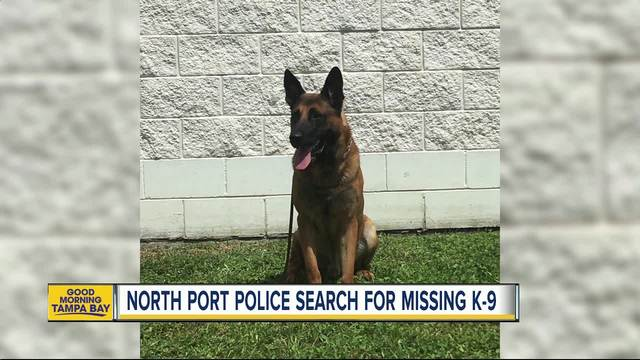 Missing Florida police dog is found dead