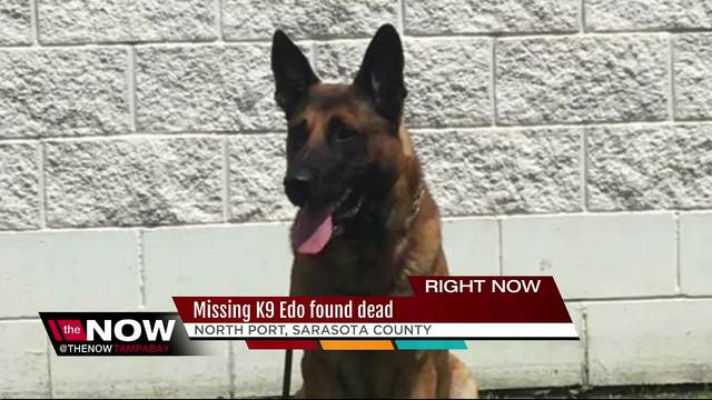 Missing Sheriff-s Office K9 found dead in North Port