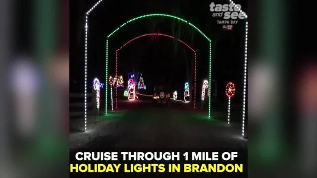 check out these christmas lights in tampa bay - How To Check Christmas Lights