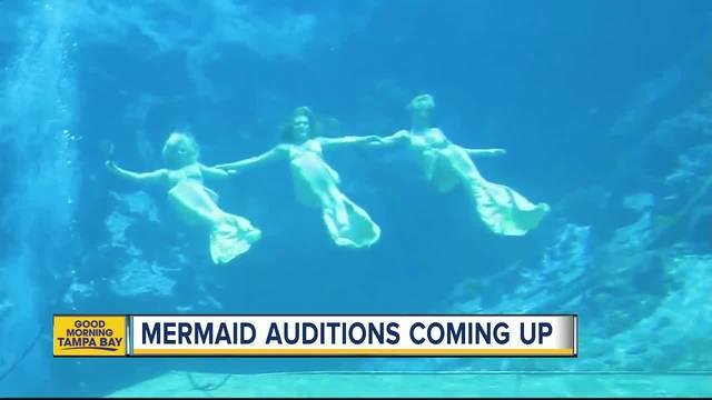 Florida's Weeki Wachee state park holding auditions for mermaids