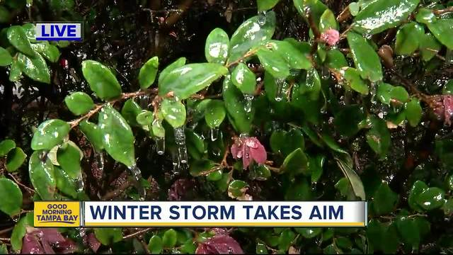 Winter Storm Watch in effect for Savannah, surrounding areas Wednesday