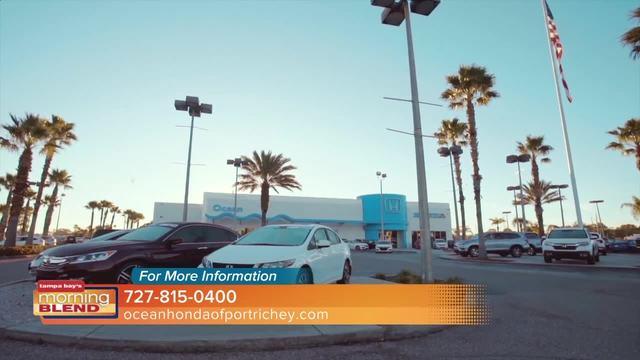 Ocean Honda of Port Richey - abcactionnews.com WFTS-TV