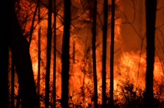Prescribed burns protect residents, enviornment