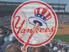 George M. Steinbrenner Field: New York Yankees