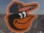 Ed Smith Stadium: Baltimore Orioles