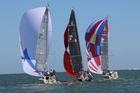 PHOTOS: NOOD Regatta series in St. Pete
