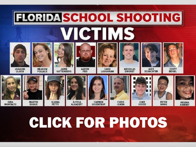 Looking for 'solutions' to mass killings? Start with punishing failure