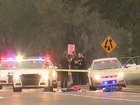 Lakeland PD reports crime drop