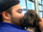 Rescue program brings puppies to your work