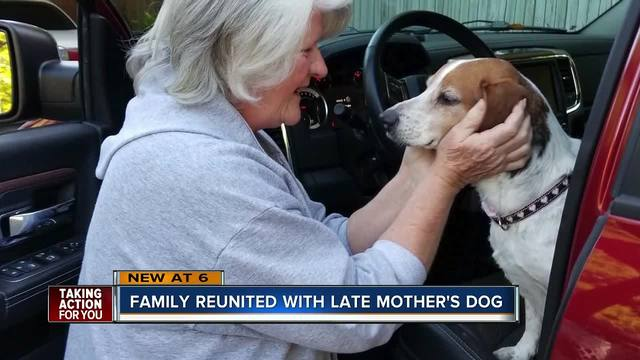 Dog defies all odds- returns home to Winter Haven family after eight years