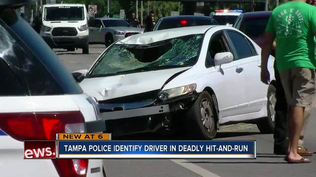 Video: Suspects sought in fatal accident on Hillsborough Avenue ...