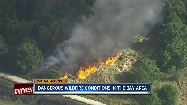 Firefighters work to put out brush fire near Hillsborough County…