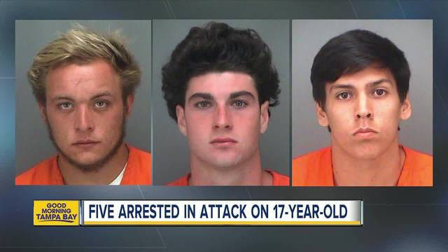 3 adults, 2 teenagers arrested for robbing, beating up juvenile in park in  Seminole - abcactionnews.com WFTS-TV