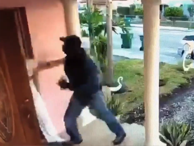 Terrifying! Video shows attempted abduction of Florida woman
