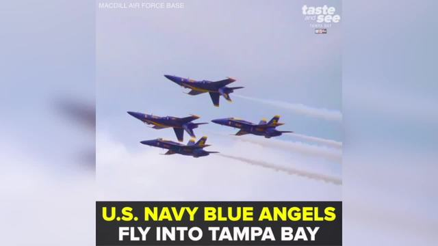 Blue Angels to headline MacDill AirFest May 12-13 - Taste and See Tampa Bay