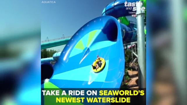 New waterslide -Ray Rush- opens at SeaWorld-s Aquatica-- Taste and See Tampa Bay