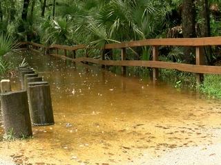 Neighbors worried about Alafia River flooding
