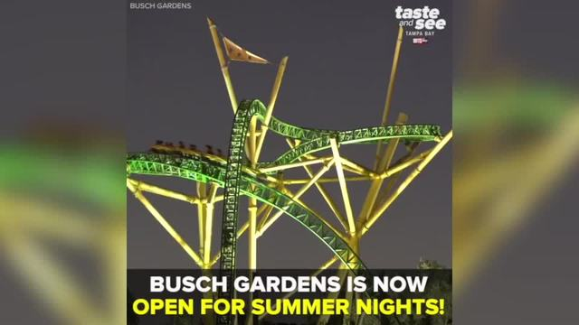 Busch Gardens Tampa Bay offers extended park hours during Summer ...