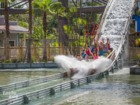 Get soaked on Roaring Springs at ZooTampa