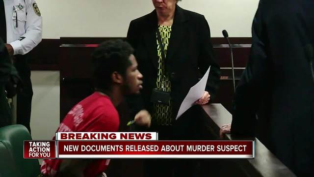 Seminole Heights Killer Case- Judge releases 1-700 pages of evidence