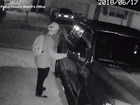 Video catches car burglary spree in Pasco County
