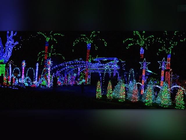 the christmas light king of riverview who gained national fame last december is selling off his epic holiday display to concentrate on other projects