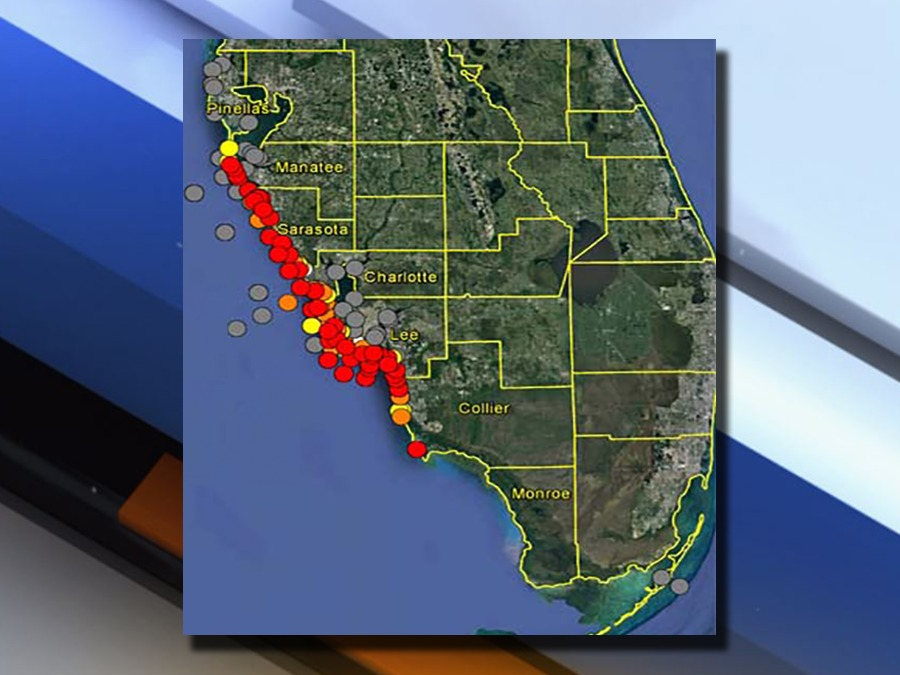 Fwc Report Shows Background To Low Concentrations Of Red Tide In