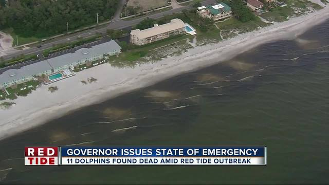 State of emergency declared due to FL red tide