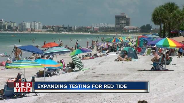 Pinellas County increases red tide sampling in the beach and bay
