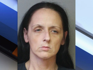 Polk woman stole 10+ identities, deputies say